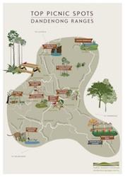 Top Picnic Spots Dandenong Ranges
